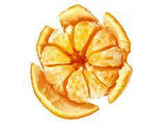 mandarin isolated on white - stock photo