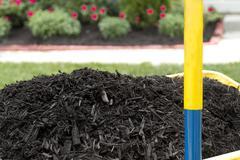 mulch in wheelbarrow - stock photo