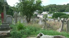 Untended Graveyard Stock Footage