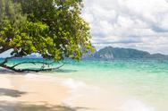 Stock Photo of tropical white sand andaman beach