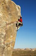 Joshua Tree kalliokiipeilyä Kuvituskuvat