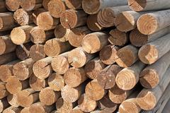 Wood logs Stock Photos