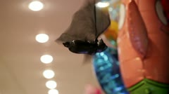 Bat in the toy shop. Stock Footage