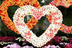 Three heart made of flowers. Stock Photos