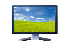 Lcd monitor with green grass meadow Stock Illustration