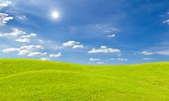 Green grass meadow and bright sun in blue sky Stock Photos