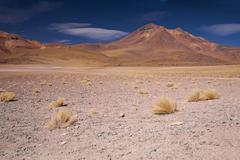 volcano miniques in atacama desert, chile - stock photo