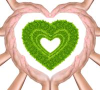 Stock Photo of green grass heart in hands