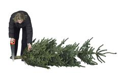 Woman and christmas tree Stock Photos