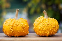 yellow pumpkins on wooden board - stock photo