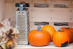 Still life from autumn pumpkins, grater and corn Stock Photos