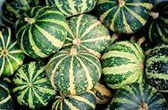 Stock Photo of green pumpkins