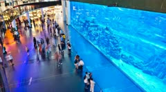 Dubai Mall Timelapse HD Stock Footage