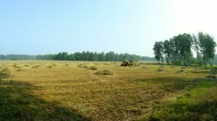 Mowing hay on a Altai Krai farm. Time lapse. Stock Footage