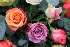 multicolor rose arrangement - stock photo