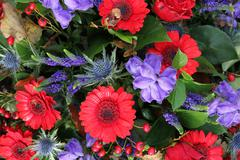 flower arrangement in red and blue - stock photo