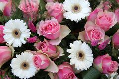 pink roses, white gerberas in bridal arrangement - stock photo