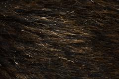 wool as background - stock photo