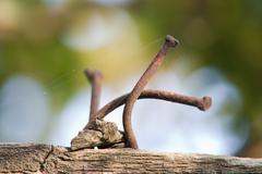 Stock Photo of old rusty nail. macro
