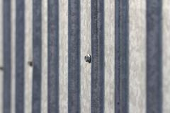 Tin fence. background Stock Photos