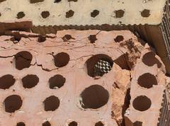 burnt brick - stock photo