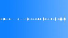Metallic Birds Sound Effect