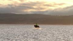 Horse and rider trotting in the water Stock Footage