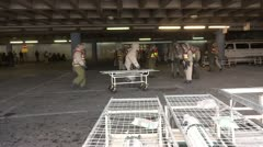 Hospital Emergency training NBC Preparedness Oxygen tank stretcher bed Stock Footage