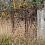 Rusty gate overgrown plants Stock Photos