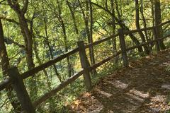 Stock Photo of shady trail with fence