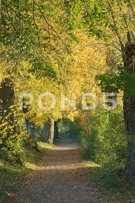 Stock photo of country walk