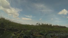 Stock Video Footage of Airboat Adventure Part 5