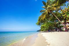 Exotic tropical beach. Stock Photos