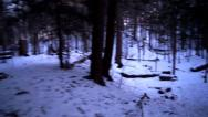Stock Video Footage of Running through forest winter steadicam
