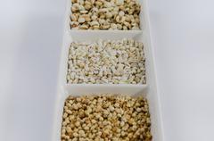 grains - stock photo