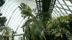 Cloud forest dome, garden by the bay, Singapore Stock Footage