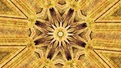 yellow flower kaleidoscope - stock footage