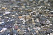 Stock Photo of background of the little stones under water