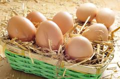 Brown eggs in a basket Stock Photos