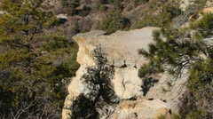 Piney Cliff Stock Footage