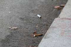Cigarettes litter the gutter Stock Photos
