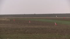 Red flags in field Stock Footage