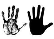 Palm Stock Illustration