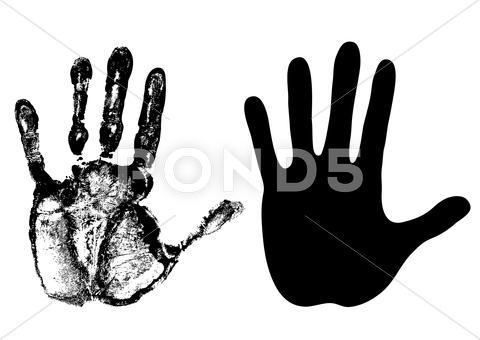 Stock Illustration of palm