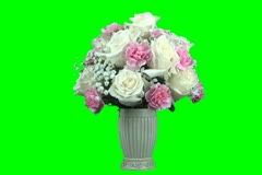 White roses and pink carnations Stock Footage