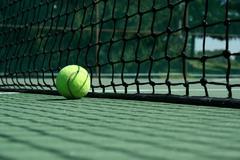tennis ball near net - stock photo