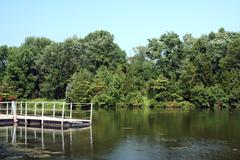 dock on a pond - stock photo