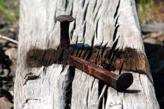 rusty railroad spike - stock photo