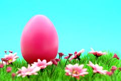 pink easter egg on meadow with flowers & cyan background - stock photo