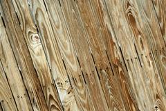 Wooden background texture Stock Photos